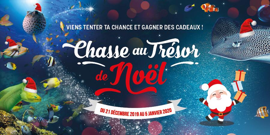 Chasse au trésor de Noël à l'Aquarium de Biarritz !